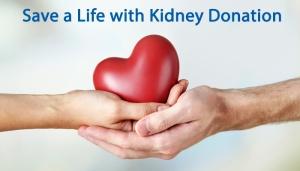 kidney-donation